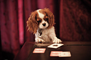Dog Cards Prints - Lady Luck Print by R. Brandon Harris
