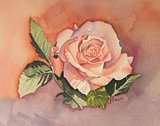 Jeanne Hall - Lady Rose