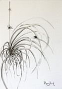 Drawing Paintings - Ladybird on Spider Plant 2 by Phong Trinh