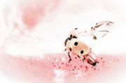 Antennae Digital Art - Ladybirds X by Mandy Tabatt