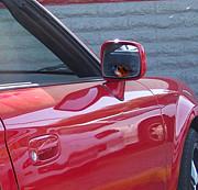 Peri Craig - Ladybug Ladybug Drive Away Home