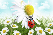 Ladybug Mixed Media Acrylic Prints - Ladybug on daisy flower design Acrylic Print by Pics For Merch