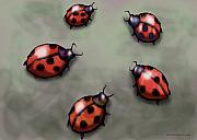 Ladybugs Print by Kevin Middleton