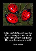 Inspirational Paintings - Ladybugs On A Leaf by Joyce Geleynse