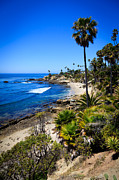 Laguna Beach Posters - Laguna Beach California Beaches Poster by Paul Velgos