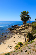 Pacific Coast Beach Framed Prints - Laguna Beach California Framed Print by Paul Velgos