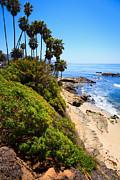 Paul Velgos - Laguna Beach California Shoreline
