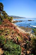 Paul Velgos - Laguna Beach Coastline Photo