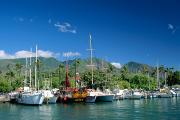 Lahaina Harbor - Maui Print by William Waterfall - Printscapes