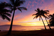 Lahaina Prints - Lahaina Sunset Print by David Olsen