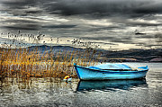 Glider Framed Prints - Lake - 4 Framed Print by Okan YILMAZ