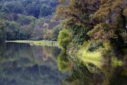 Blue Ridge Photos - Lake Abbott Reflections by Alan Raasch