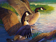 Canadian Geese Painting Posters - Lake Afternoon Poster by Laurie Cook