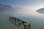 Flock Of Birds Art - Lake Annecy (lac Dannecy) by Harri