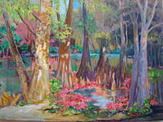 AnnE Dentler - Lake Arthur Swamp