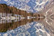 Lake Bohinj Framed Prints - Lake Bohinj Framed Print by Andre Goncalves
