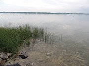 Wade Fishing Photos - Lake Cayuga Grassy Waterscape by JB Ronan