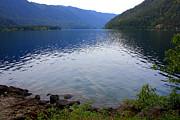 Calm Waters Prints - Lake Crescent - Digital Painting Print by Carol Groenen