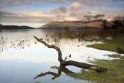 Ocean Front Photos - Lake Derwent, Cumbria, England by John Short