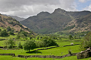 Rock Walls Prints - Lake District England Print by Tom and Pat Cory