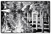 Pine Barrens Prints - Lake Dock Print by John Rizzuto
