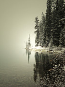 Winter Photos Posters - Lake Edge Poster by Andrea Hazel Ihlefeld