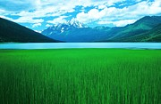 Ronnie Glover Art - Lake Eklutna 2 by Ronnie Glover