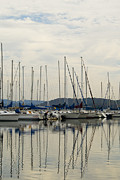 Docked Sailboat Posters - Lake Guntersville Alabama Sailboat Harbor Poster by Kathy Clark