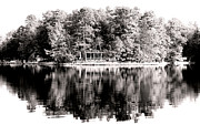 Pine Barrens Posters - Lake House Poster by John Rizzuto