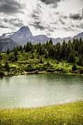 Graubunden Framed Prints - Lake In Grassy Rural Landscape Framed Print by Manuel Sulzer