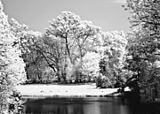 Dreamy Infrared Photo Art Framed Prints - Lake in infra red Framed Print by Odon Czintos
