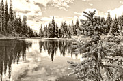 Lake Irene Prints - Lake Irene at Milners Pass - Rocky Mountain National Park Colorado Print by Andre Babiak