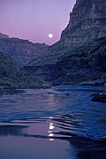 Moonlit Night Framed Prints - Lake Light On Colorado River,grand Framed Print by David Edwards