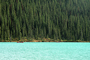 Lake Louise Photos - Lake Louise And Trees by Amy Herbison