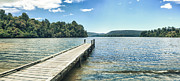Jetty View Park Framed Prints - Lake Mapourika panorama Framed Print by MotHaiBaPhoto Prints
