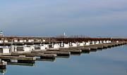 Rosanne Jordan - Lake Michigan Harbor