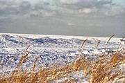 Lake Michigan On Ice Print by Purcell Pictures