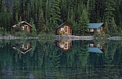 Log Cabins Photo Posters - Lake Ohara Lodge Cabins Reflected Poster by Michael Melford