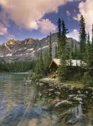 Log Cabins Prints - Lake Ohara Lodge Print by Darwin Wiggett
