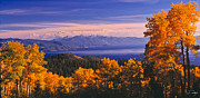 Aspens Prints - Lake Tahoe Fall East Shore Print by Vance Fox