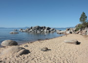 Beach Scene Photos - Lake Tahoe Morning by Carol Groenen