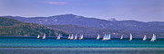 Boat Race Posters - Lake Tahoe Sailing Panorama Poster by Vance Fox