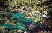 Lake Art - Lake Tahoe Swimming Hole by Scott McGuire