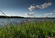 Camelot Photo Prints - Lake view Print by Gary Eason