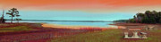 Family Time Digital Art Posters - Lake View Sunset Panorama Poster by Patricia L Davidson