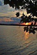 Lakeset Leaves Print by TSC Photography Timothy Cuffe Jr