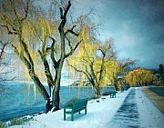 Benches Prints - Lakeshore Walkway in Winter Print by Tara Turner