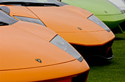 Lamborghini Prints - Lamborghinis Print by Jill Reger