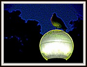 Story  Little Bird Posters - Lamp And The Bird Poster by Anand Swaroop Manchiraju