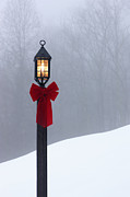 Bare Trees Prints - Lamppost in Snow Print by Will and Deni McIntyre